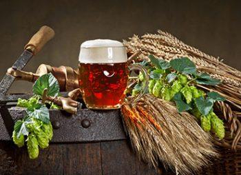 Ein Glas Bockbier neben Hopfen und Malz